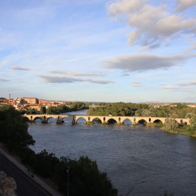 Zamora y puente